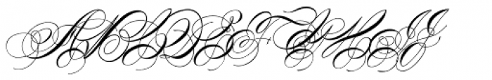 Albion Signature Medium Font UPPERCASE