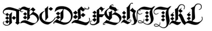 Albrecht Duerer Fraktur Pro Font UPPERCASE