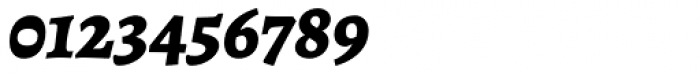 Alegreya ht Pro ExtraBold Italic Font OTHER CHARS