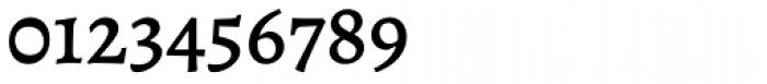 Alegreya ht Pro Medium Font OTHER CHARS