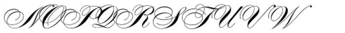 Alexandra Script Font UPPERCASE