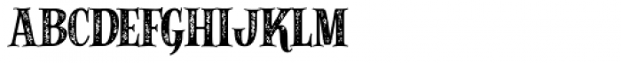Alfons Serif Bold Printed Font LOWERCASE