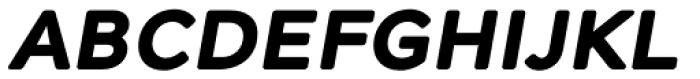 Alleyn Bold Italic Font UPPERCASE