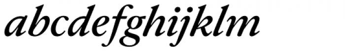 Allrounder Antiqua Medium Italic Font LOWERCASE
