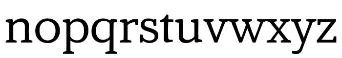 Amstelvar Font LOWERCASE
