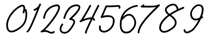 Amanda Signature Font OTHER CHARS