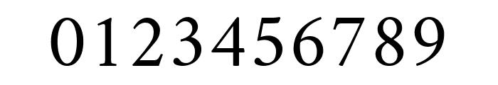 Amiri Italic Font OTHER CHARS