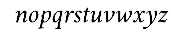 Amiri Italic Font LOWERCASE