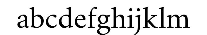 Amiri Regular Font LOWERCASE