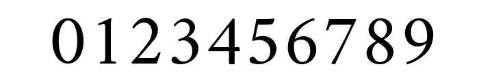 Amiri Slanted Font OTHER CHARS