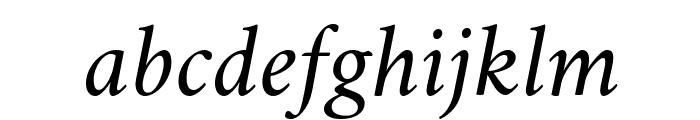 Amiri Slanted Font LOWERCASE
