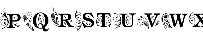 am_intex Font LOWERCASE