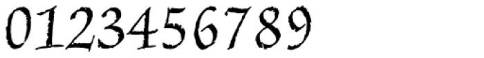 Amarone Regular Font OTHER CHARS