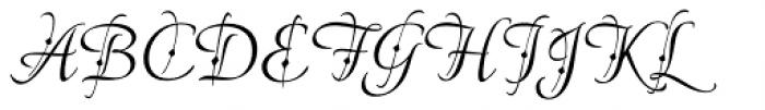 American Calligraphic Fleur Font UPPERCASE