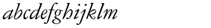 American Garamond Italic Font LOWERCASE