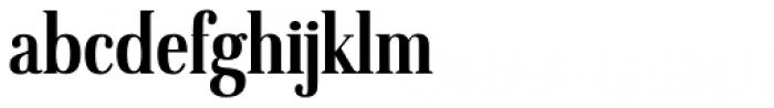 American Oak Serif Font LOWERCASE
