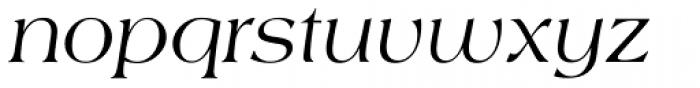 Americana Italic Font LOWERCASE