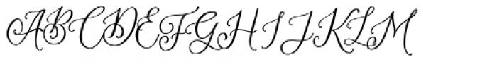 Amerta Misty Regular Font UPPERCASE