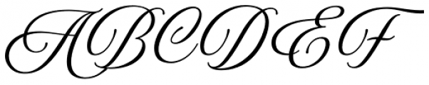 Amoresa Regular Font UPPERCASE