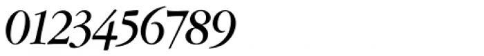 Amsterdamer Garamont Pro Bold Italic Font OTHER CHARS