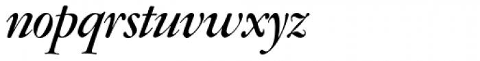 Amsterdamer Garamont Pro Bold Italic Font LOWERCASE