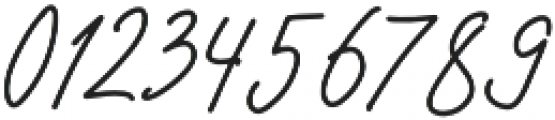 AndaloSignature Regular otf (400) Font OTHER CHARS