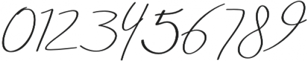 Aneisha Script italic Regular otf (400) Font OTHER CHARS