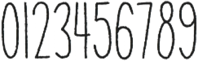 Anitype Redwood 1 otf (400) Font OTHER CHARS