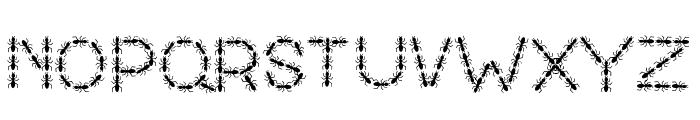 ANTY Bold Font UPPERCASE