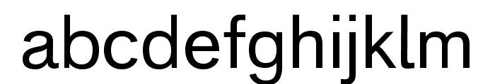 Analogue Reduced 55 Regular Font LOWERCASE