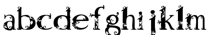 AndalasiaRegular Font LOWERCASE