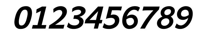Andika New Basic Bold Italic Font OTHER CHARS