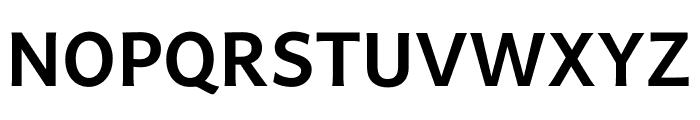 Andika New Basic Bold Font UPPERCASE