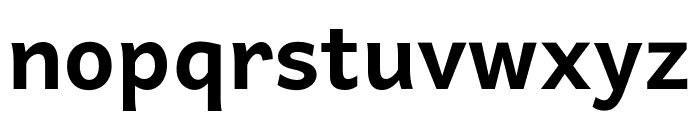 Andika New Basic Bold Font LOWERCASE