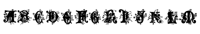 Angel Normal Font LOWERCASE