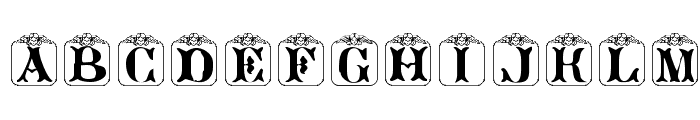 Angelots (Unregistered) Font LOWERCASE