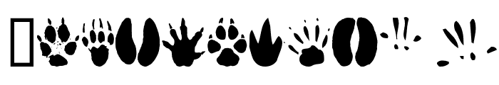 AnimalTracks Font OTHER CHARS