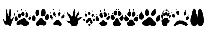 AnimalTracks Font LOWERCASE
