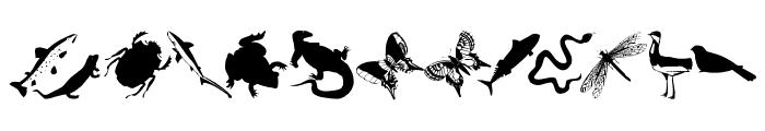AnimalishSilhouettes Font LOWERCASE