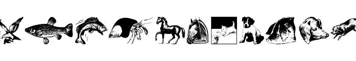 AnimalsOldfashion Font UPPERCASE