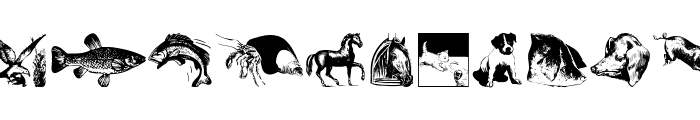 AnimalsOldfashion Font LOWERCASE