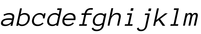 Anonymous Pro Italic Font LOWERCASE