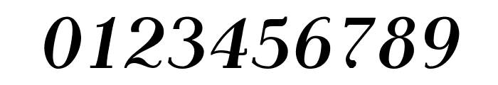 AntPolt-BoldItalic Font OTHER CHARS