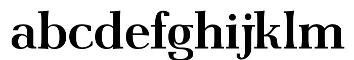 AntPolt-Bold Font LOWERCASE