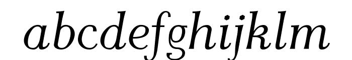 AntPoltLt-Italic Font LOWERCASE