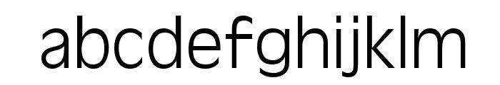 Antigoni Light Font LOWERCASE