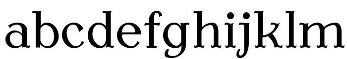 AntykwaTorunska-Regular Font LOWERCASE