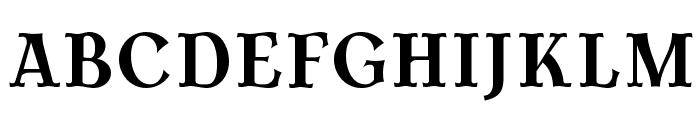 AntykwaTorunskaCond-Bold Font UPPERCASE