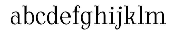 AntykwaTorunskaCondLight-Regular Font LOWERCASE