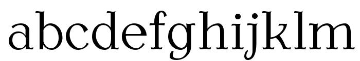 AntykwaTorunskaLight-Regular Font LOWERCASE